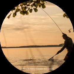 Finland_Saimaa_fishing